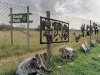 game-park-outskirts-of-johannesburg-south-africa-2003_0