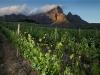 lomarins-vineyards-and-grootdrakenstein-mountains-franschhoek-sa-2011_0