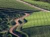 lomarins-wine-estate-franschhoek-valley-south-africa-2011_0