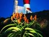 Cape Agulhas lighthouse. Overberg. Western Cape. South Africa. '99.
