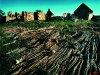 Groenrivier ruins. Nieuwoudtville. Northern Cape. South Africa. '99.