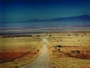 Road C13 from Helmeringhausen to Aus. Namibia. '99.